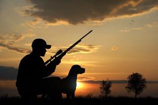 Crossbow vs. Gun Hunting