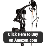 Best Compound Bow Reviews - What are the Top Compound Bows