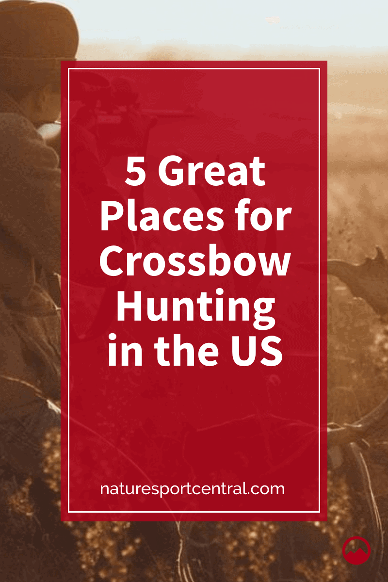 5 Great Places for Crossbow Hunting in the US