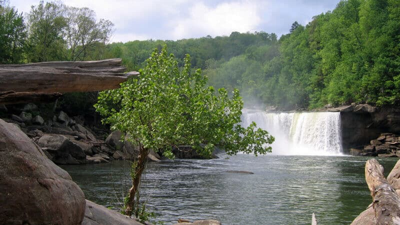 Eagle Falls Trail In Cumberland Falls for Hiking