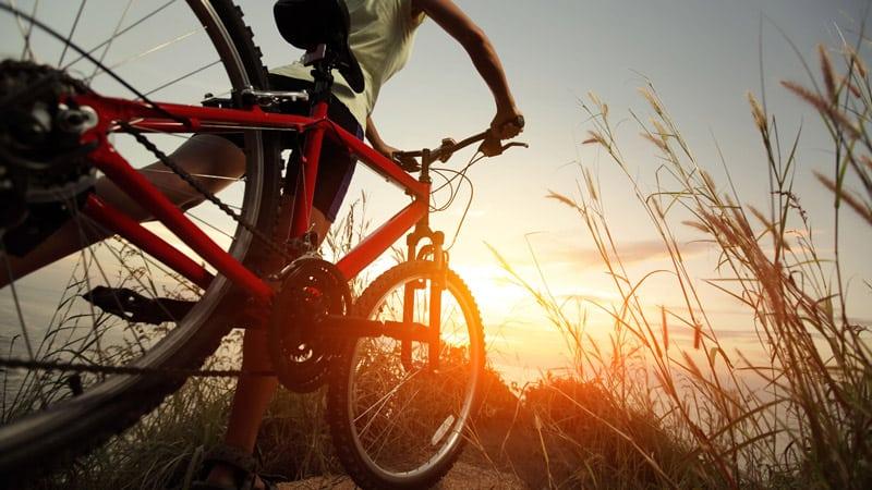 Mountain Bikes For Beginners