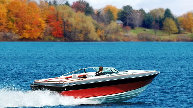 License to Drive a Boat