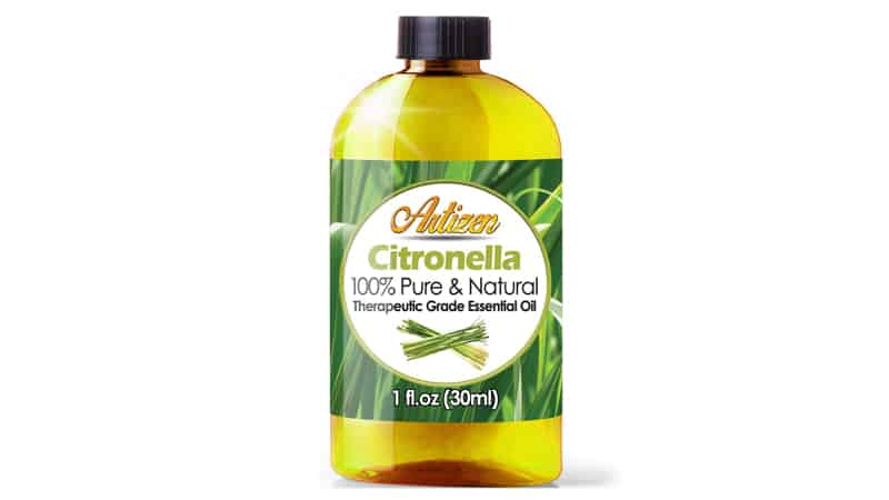 Citronella can Repel Mosquitoes