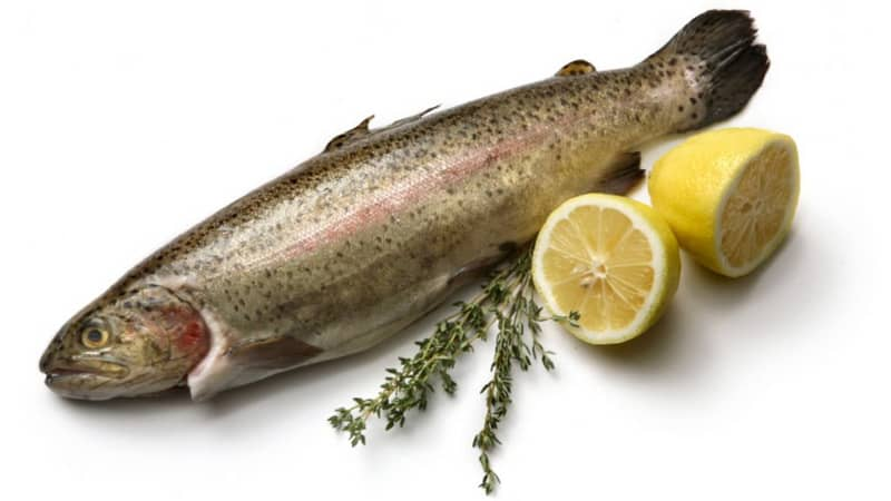 Remove Rainbow Trout Fish Smell