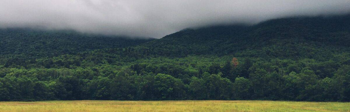 Cloudy Green Plains