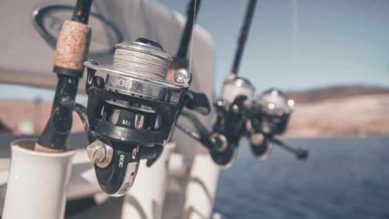 Multiple Fishing Rods