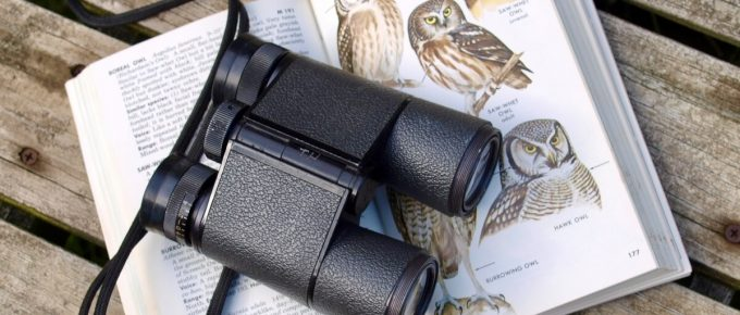 What is the Strongest Magnification for Binoculars