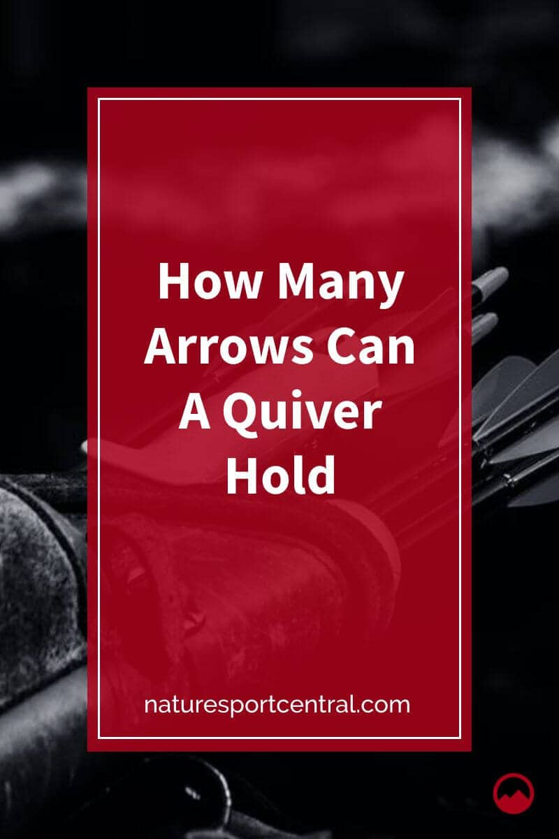 How Many Arrows Can A Quiver Hold