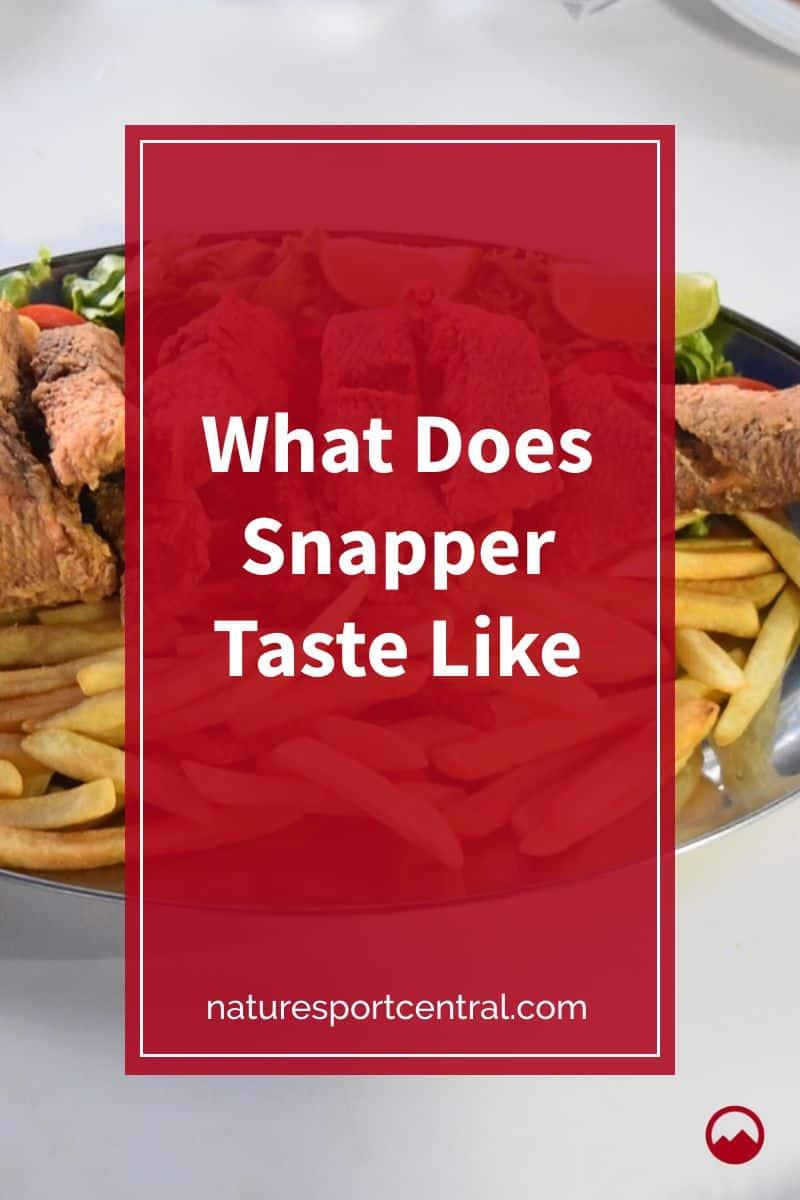 What Does Snapper Taste Like