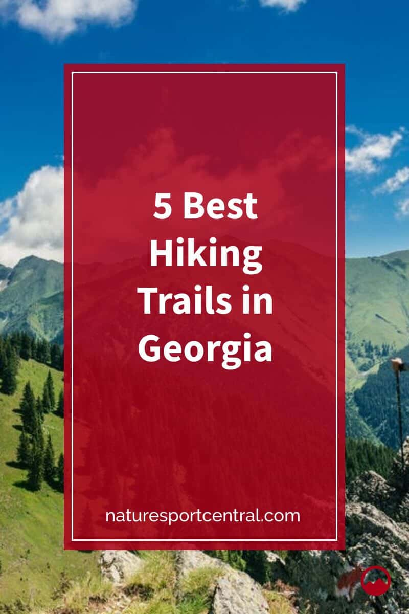 5 Best Hiking Trails in Georgia