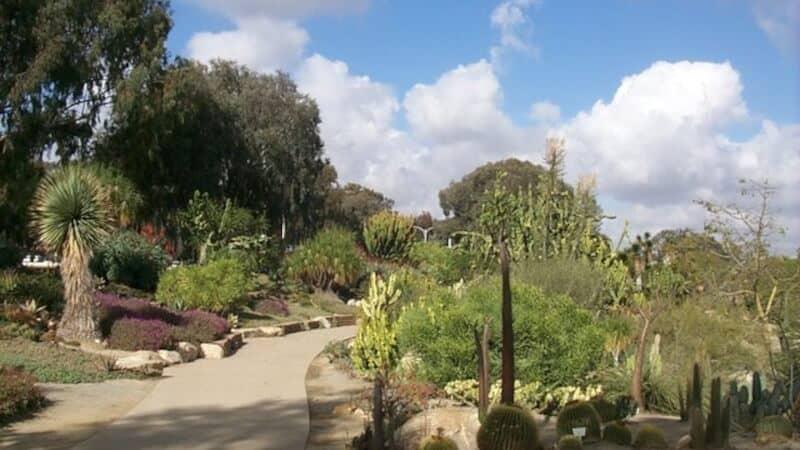 Balboa Park Trails