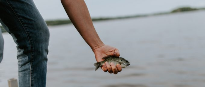 Good Inexpensive Fish Finders For Kayaks