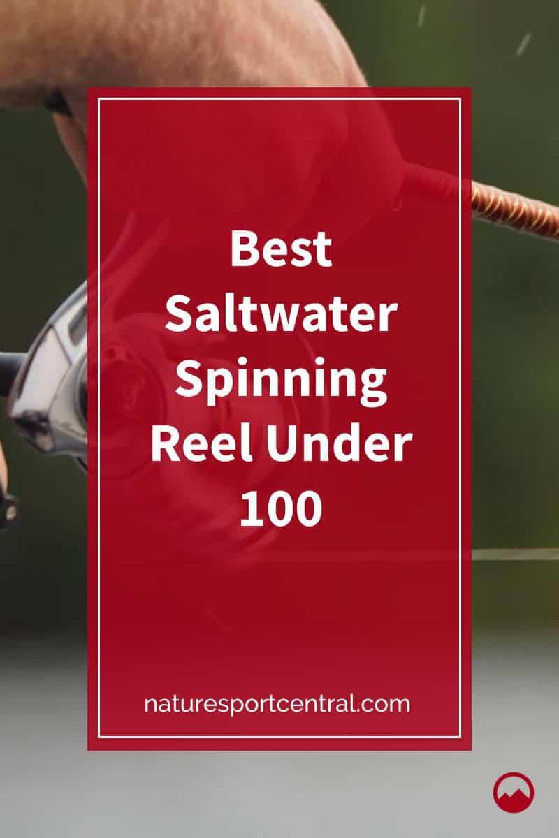 Best Saltwater Spinning Reel Under 100
