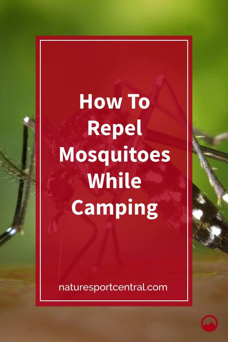 How To Repel Mosquitoes While Camping