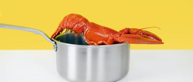 How Long Do You Boil a Lobster Tail
