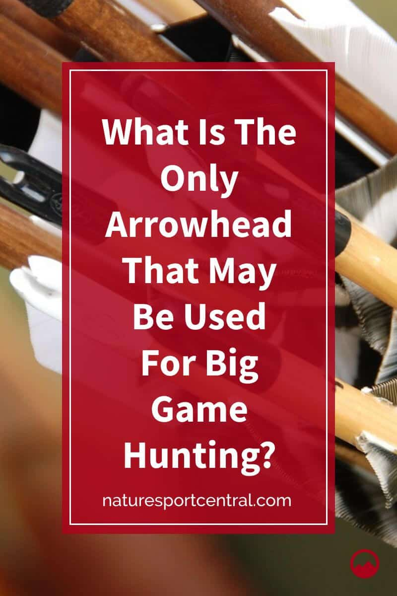 What Is The Only Arrowhead That May Be Used For Big Game Hunting