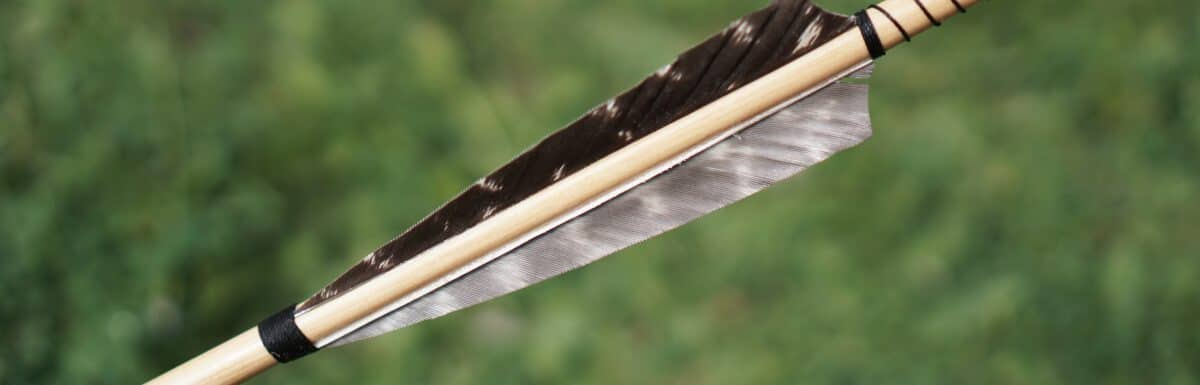 What are the Feathers on an Arrow Called