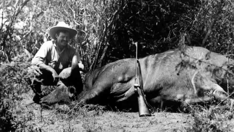 hunter with a big animal