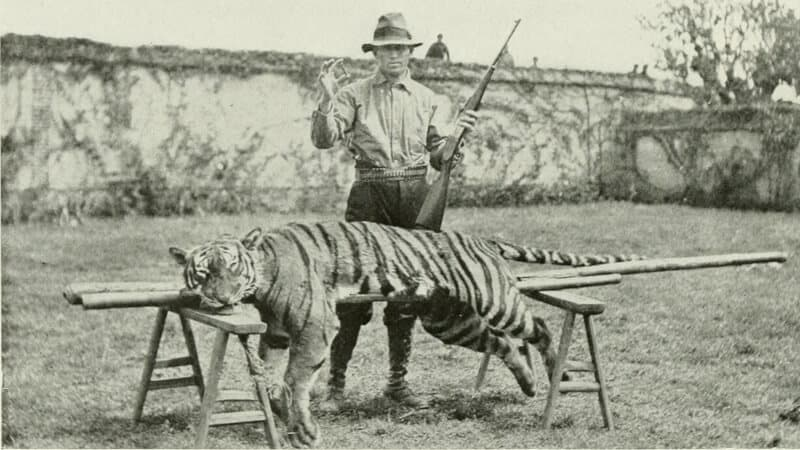 hunter with a dead tiger