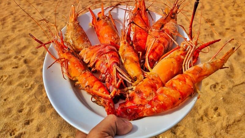 lobsters in beach