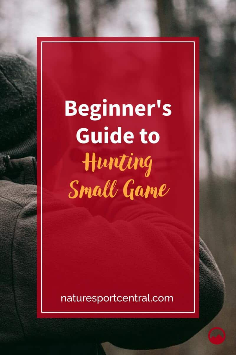 Beginner's Guide to Hunting Small Game (2)