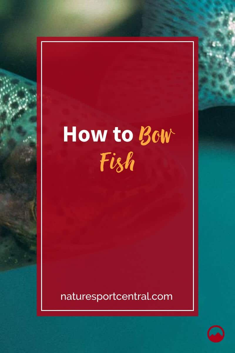 How to Bow Fish (1)