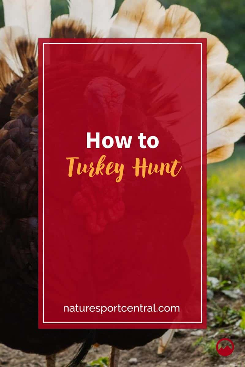 How to Turkey Hunt (1)