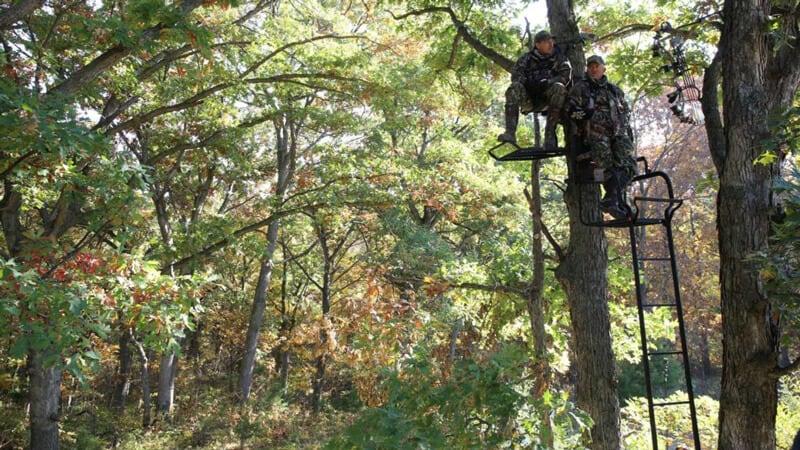 Deer Hunting Using Climbing Stand
